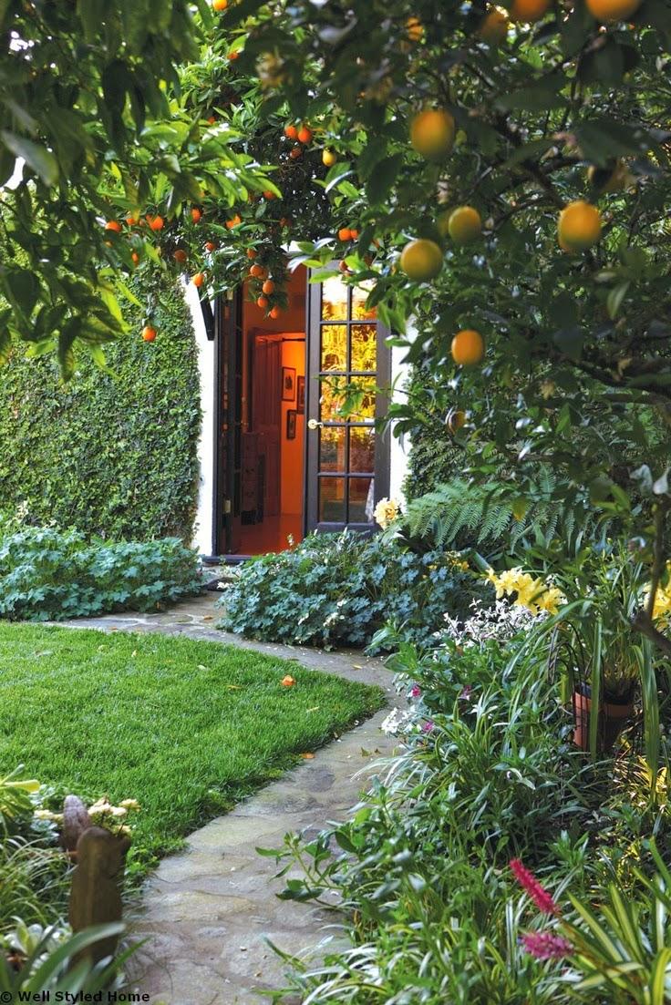 craving fruit trees - Crazy Wonderful
